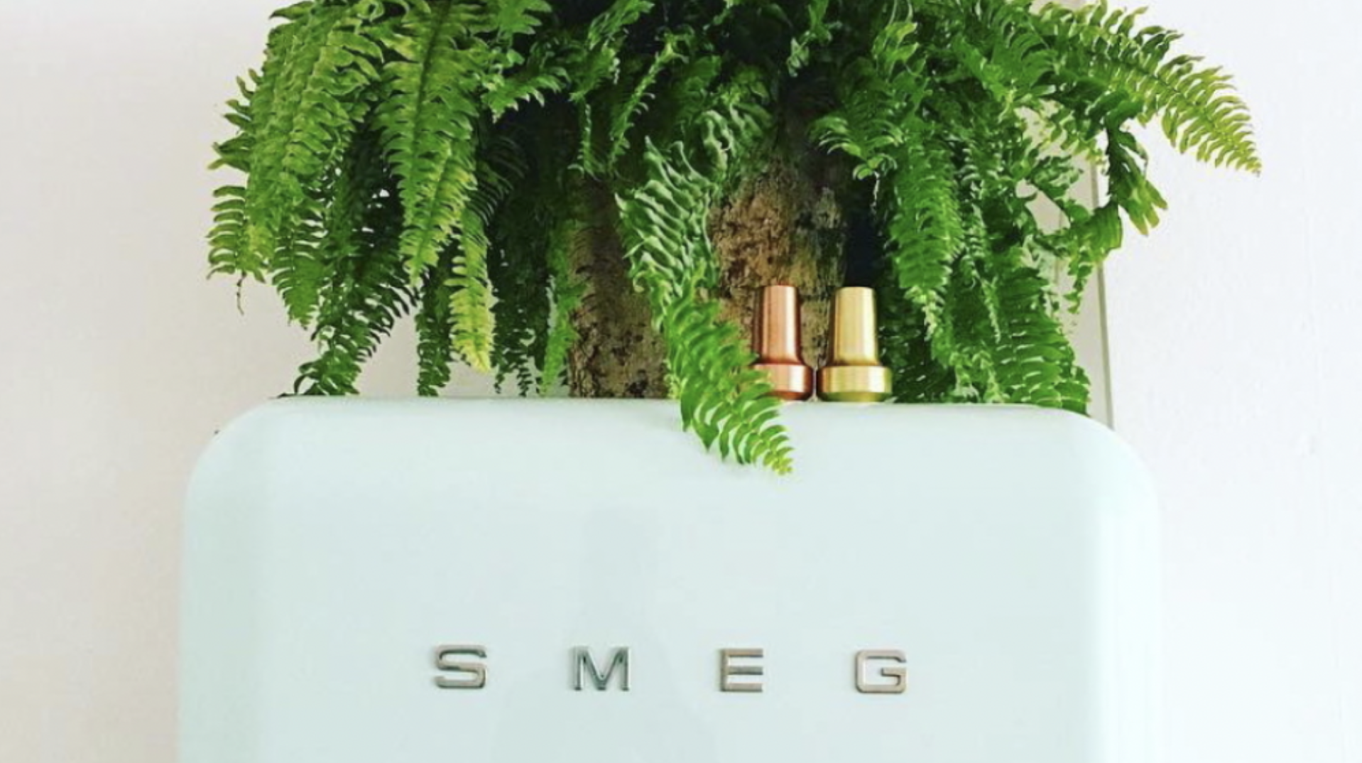 Go Green with Smeg